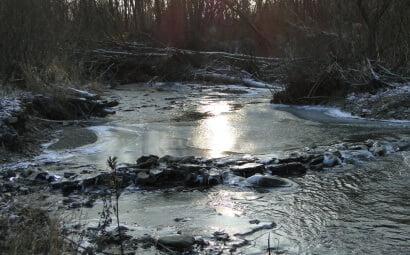 Rzeka Bełcza skuta lodem 7