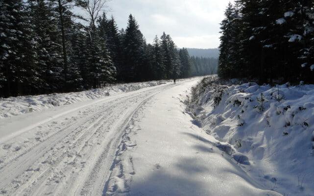 Na nartach do Polan Surowicznych! 5