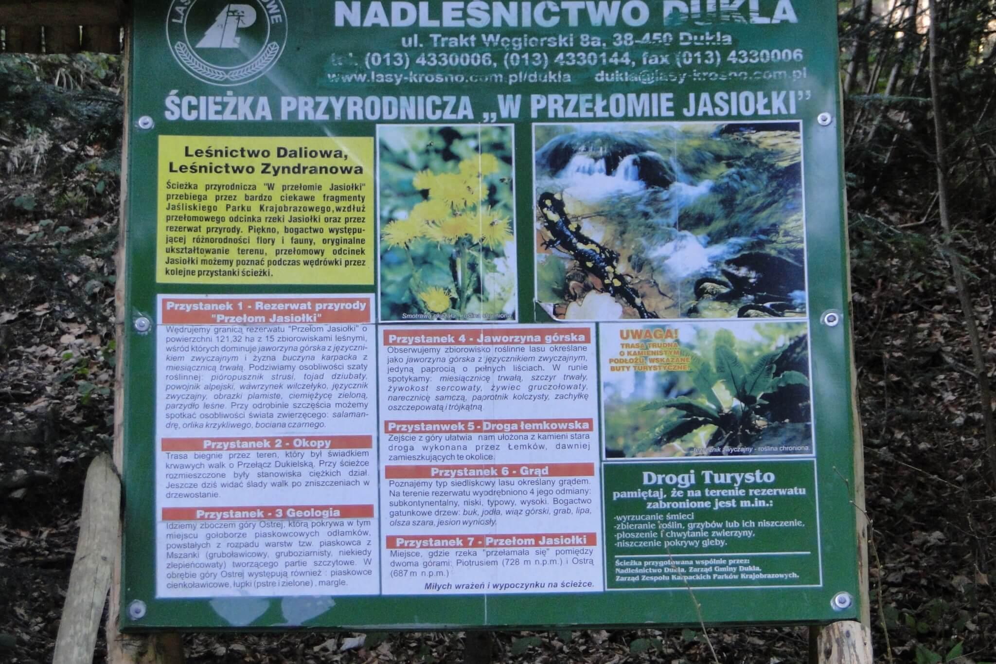 Przełom Jasiołki - wposzukiwaniu wiosny 14