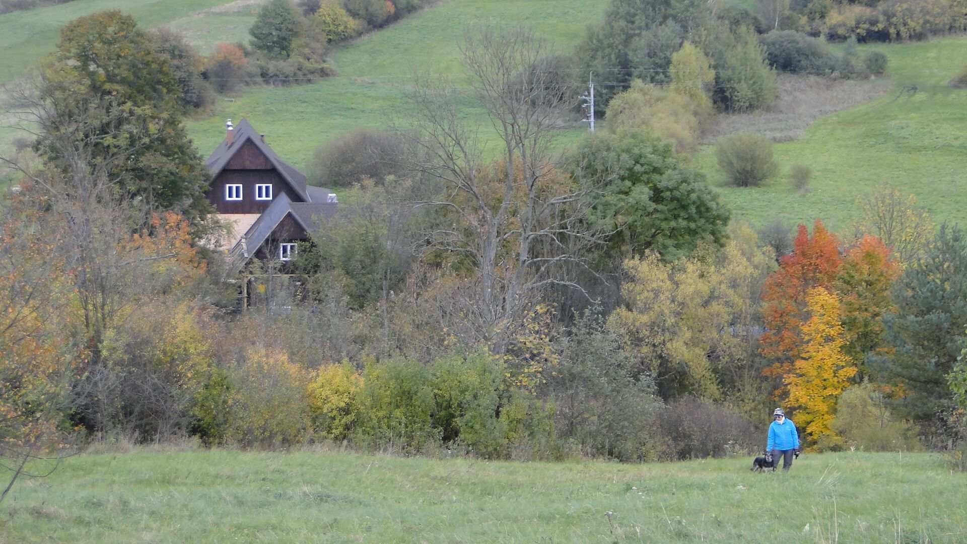 Wokół domu jesienny pejzaż... 2