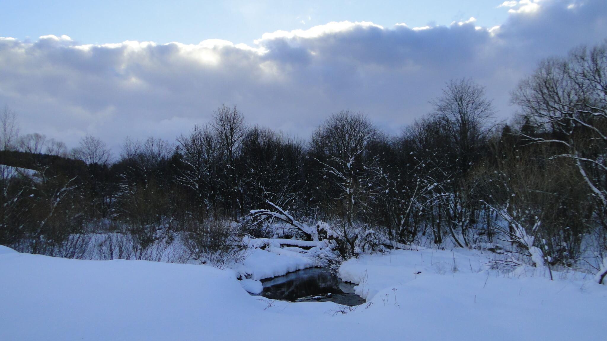 Zima nacałego! 4