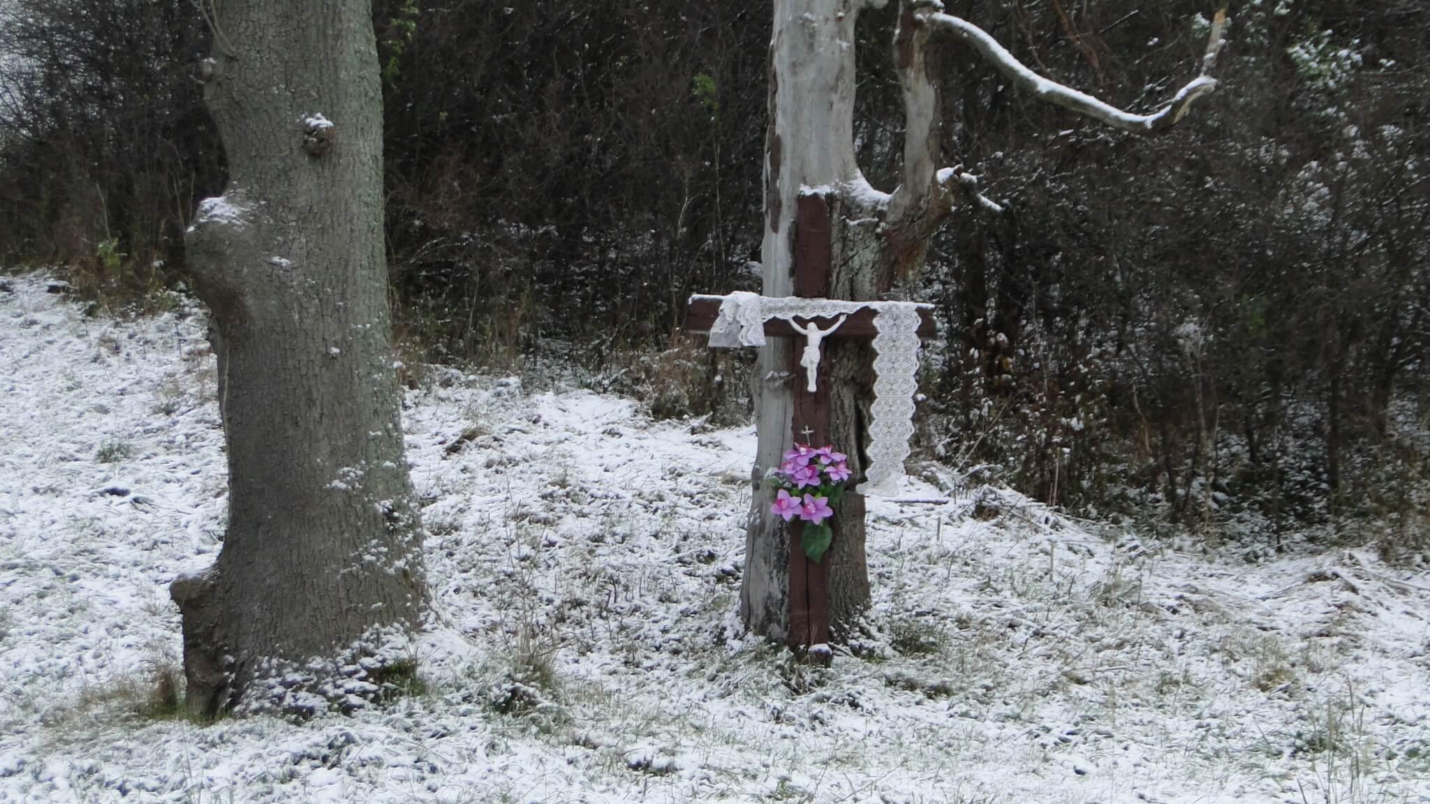 Listopad - miedzy jesienią a zimą... 1