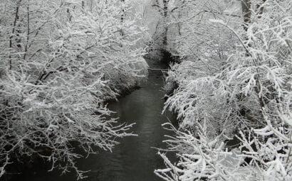 Zima przyszła 5