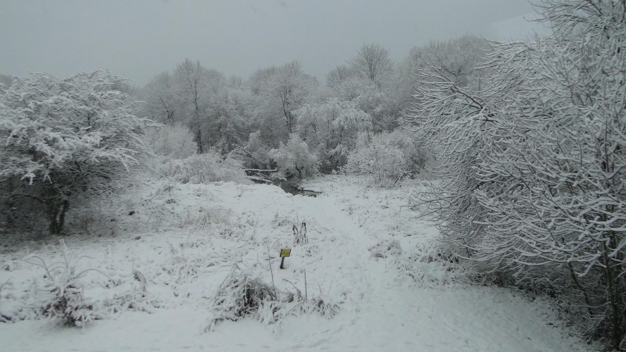 Zima przyszła 6