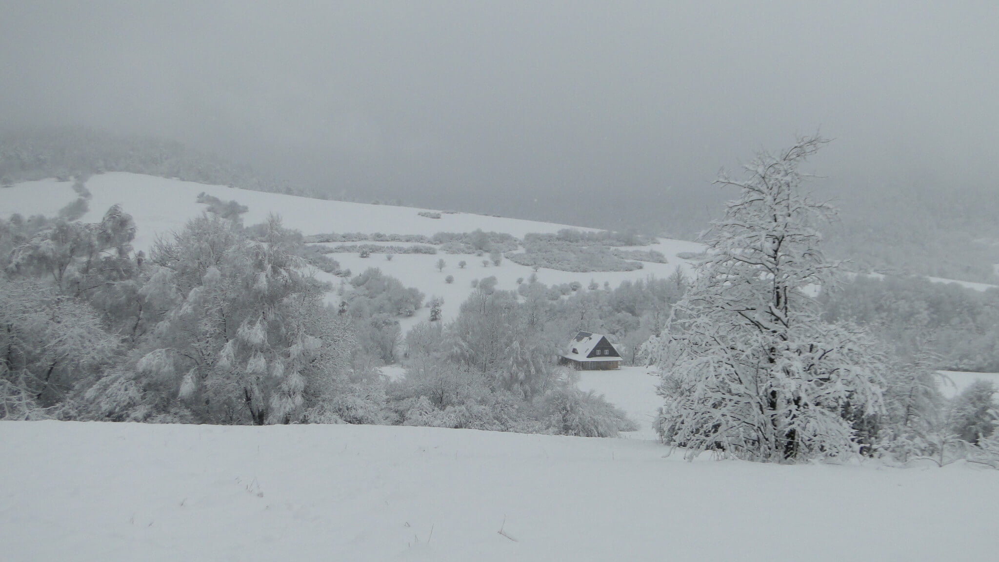 Lutowa zima - śnieżna imroźna