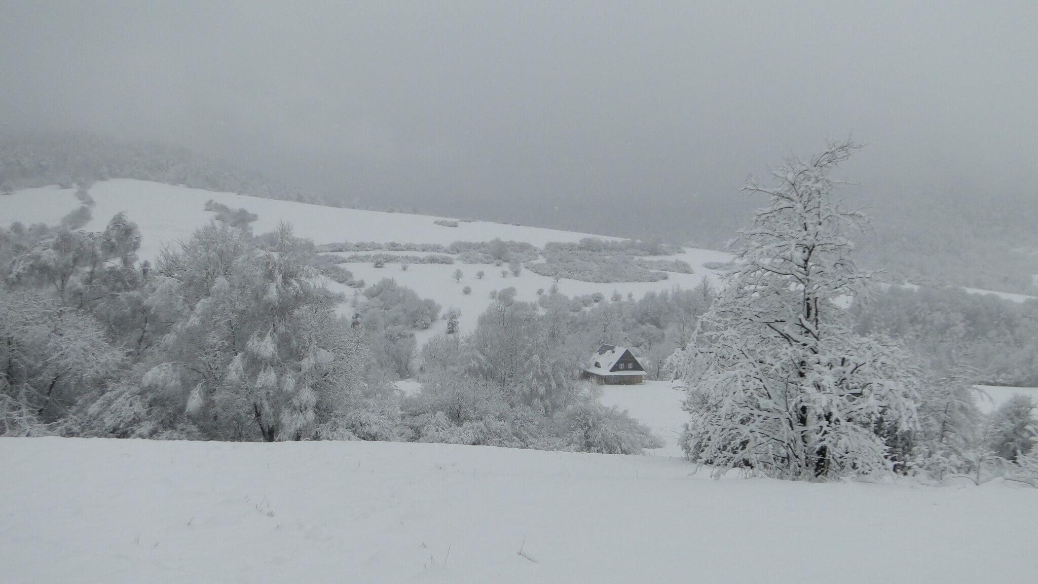 Lutowa zima - śnieżna i mroźna