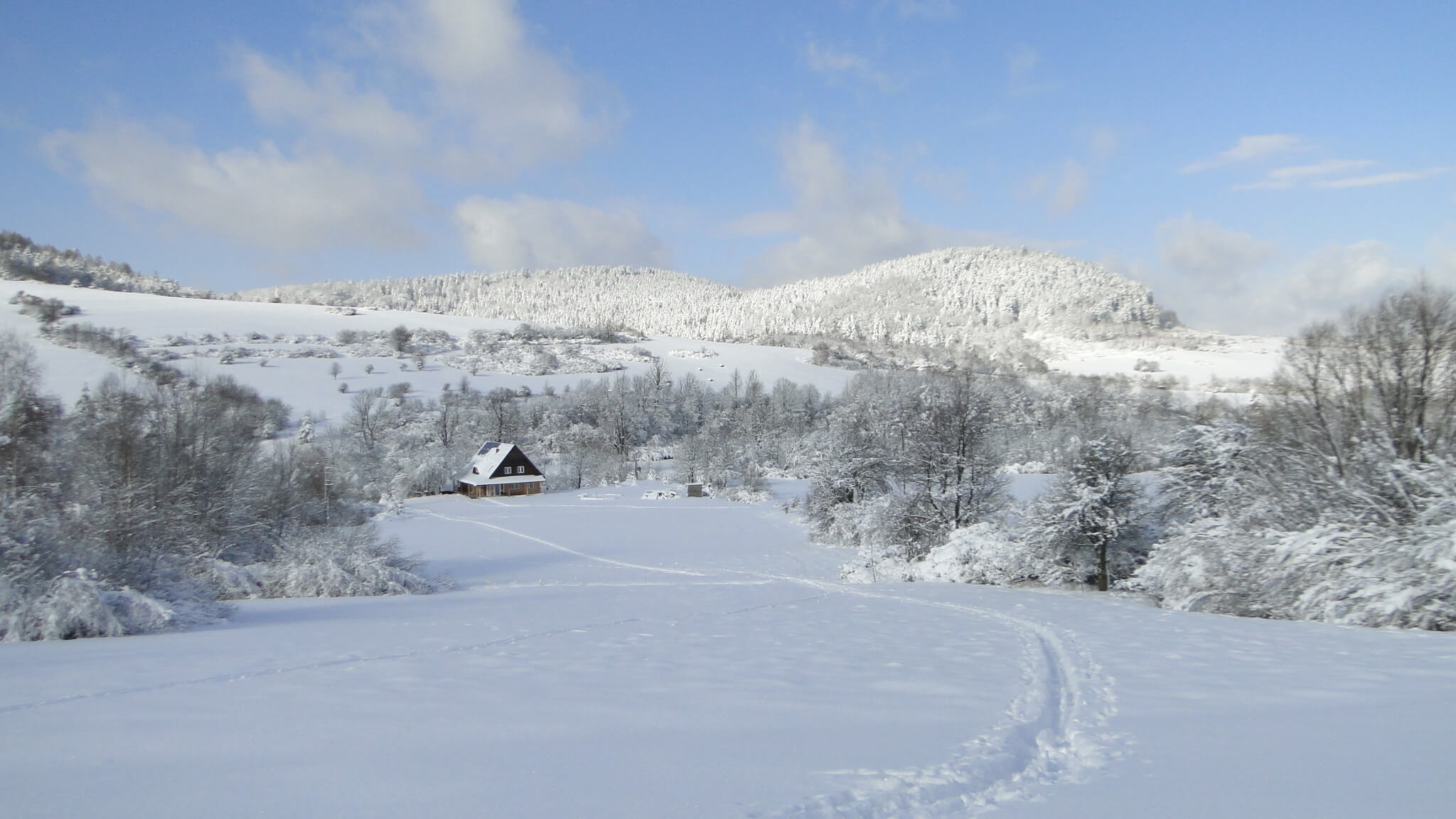 Lutowa zima - śnieżna i mroźna 6
