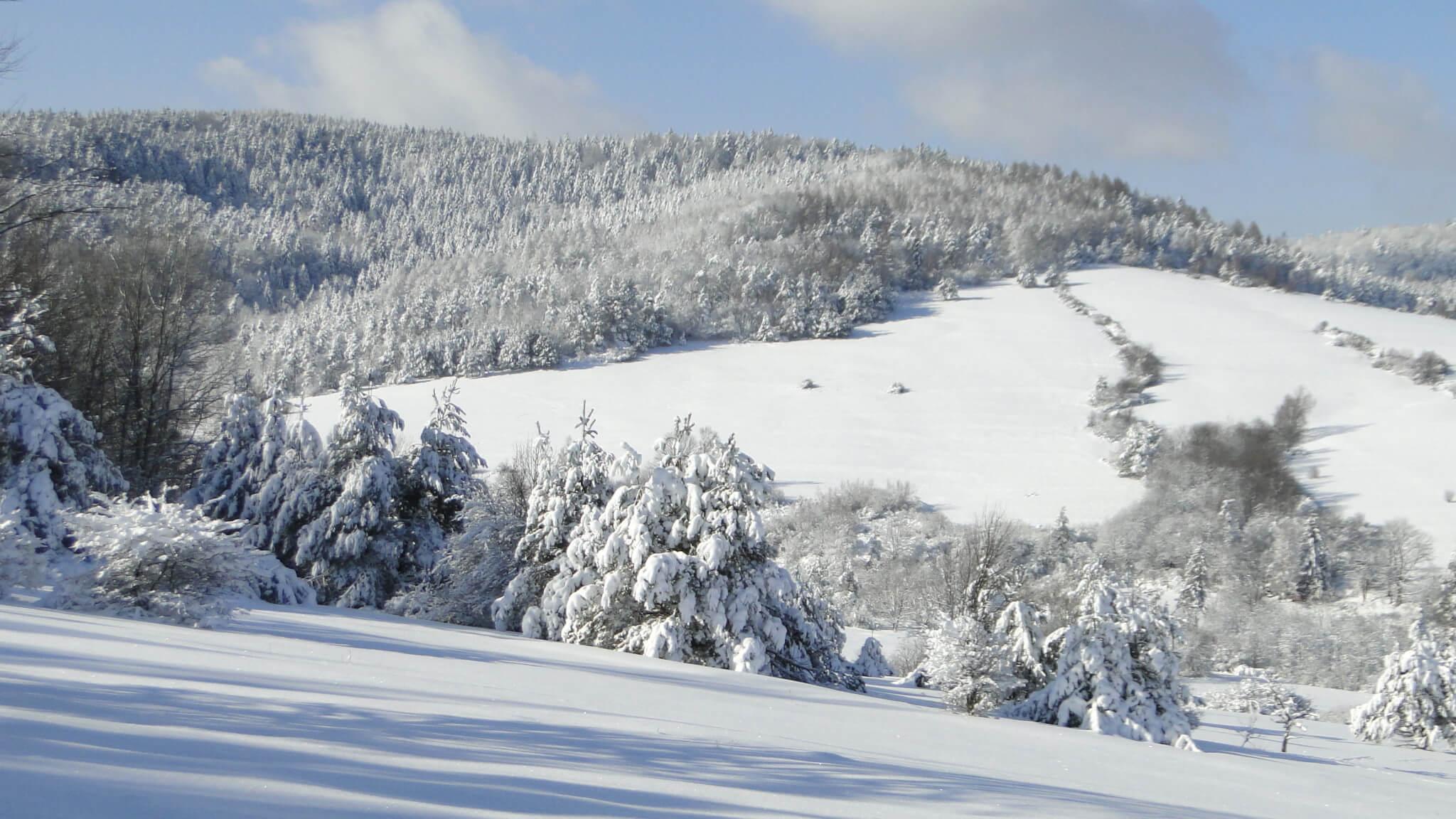 Lutowa zima - śnieżna imroźna 7