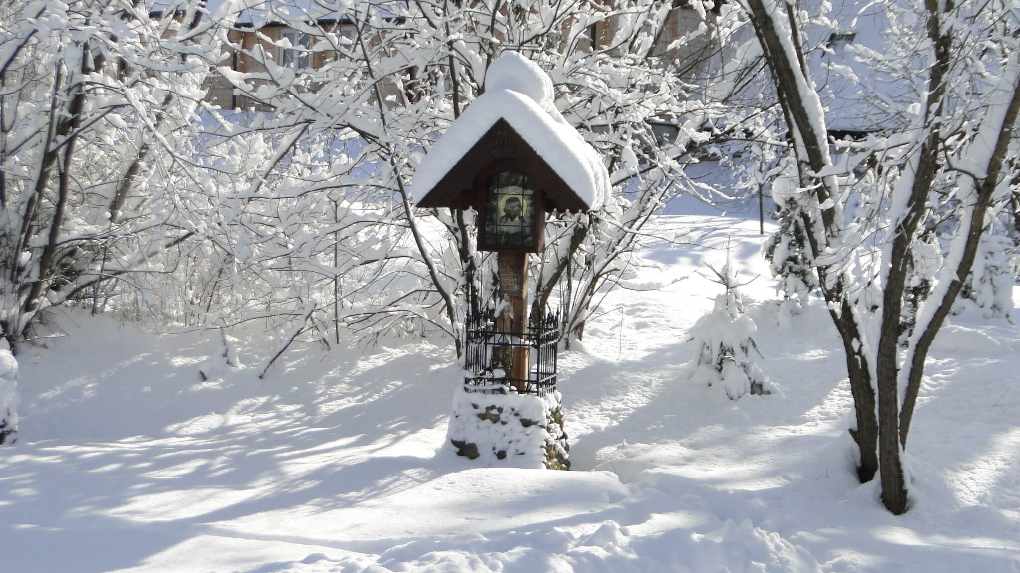 Lutowa zima - śnieżna i mroźna 10