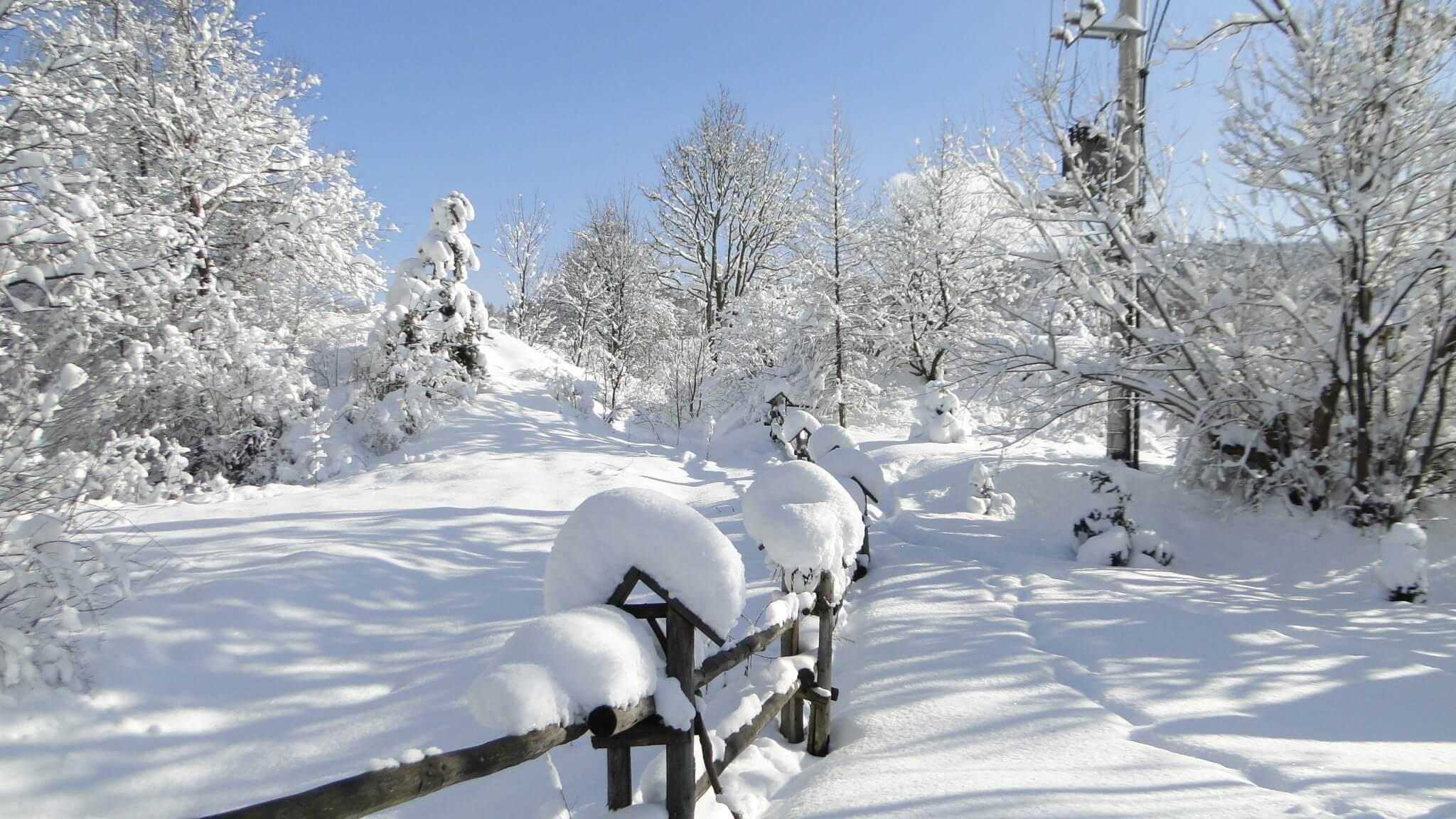Lutowa zima - śnieżna imroźna 11
