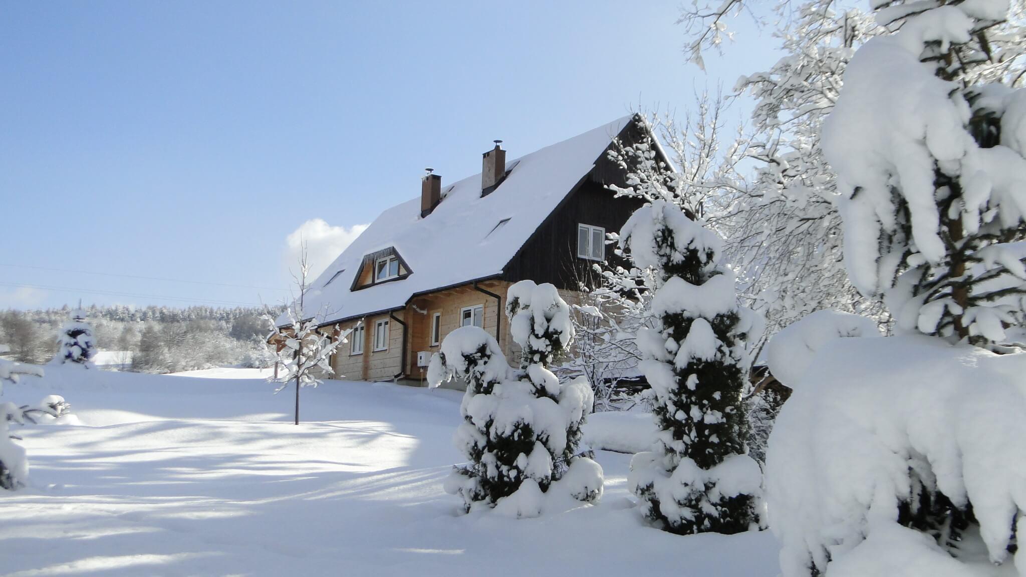 Lutowa zima - śnieżna imroźna 12