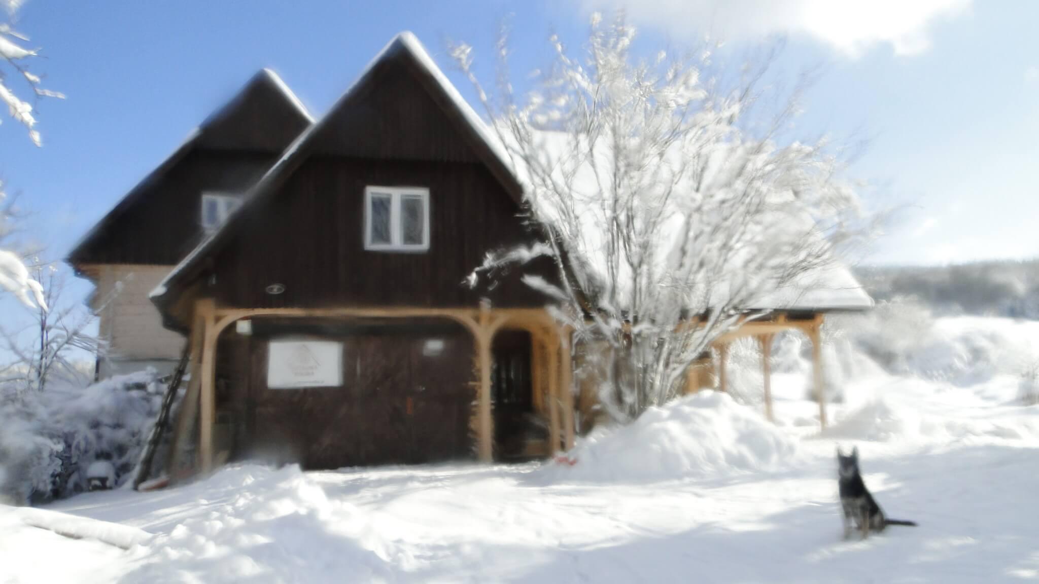 Lutowa zima - śnieżna i mroźna 14