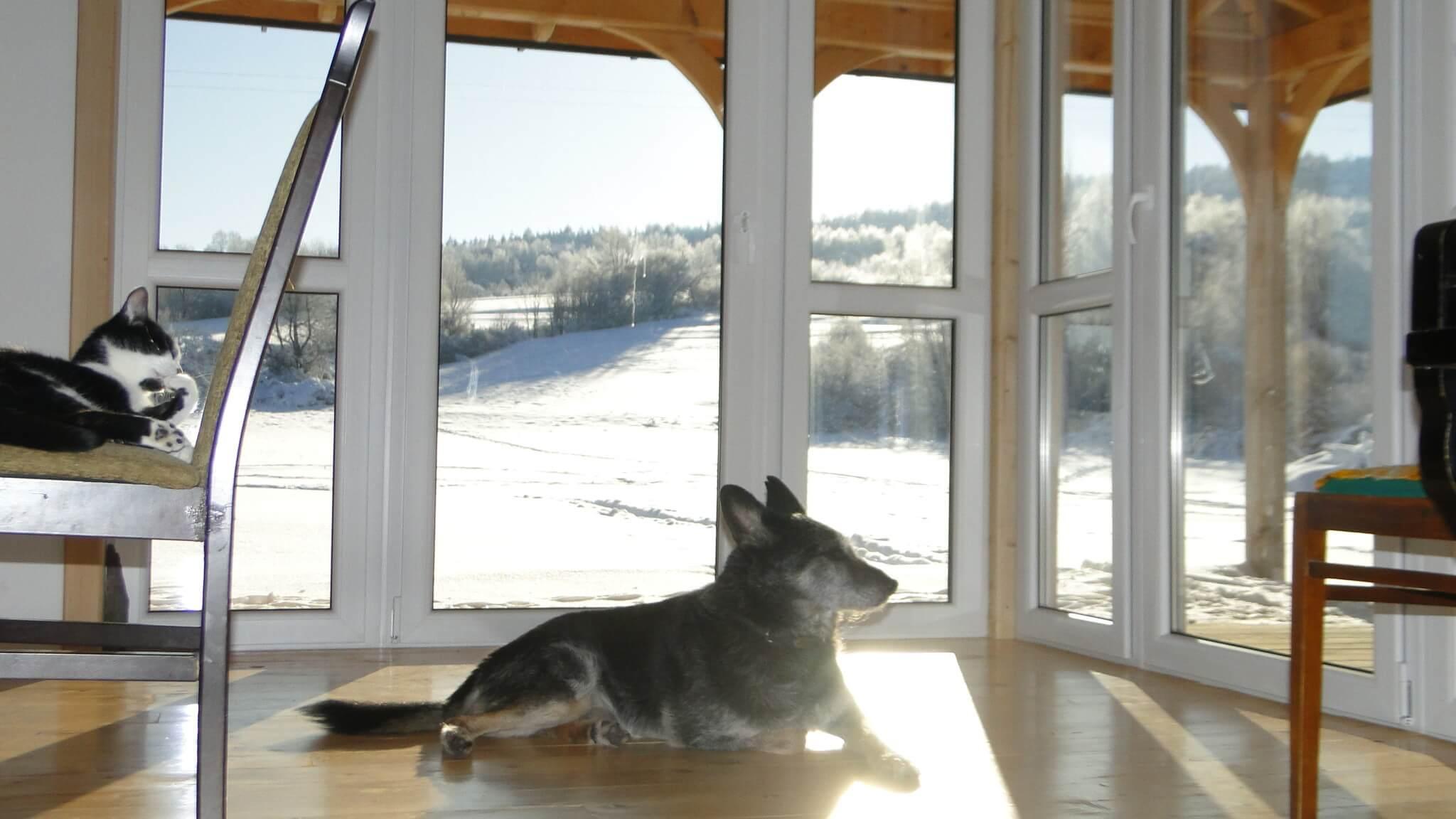 Lutowa zima - śnieżna imroźna 15