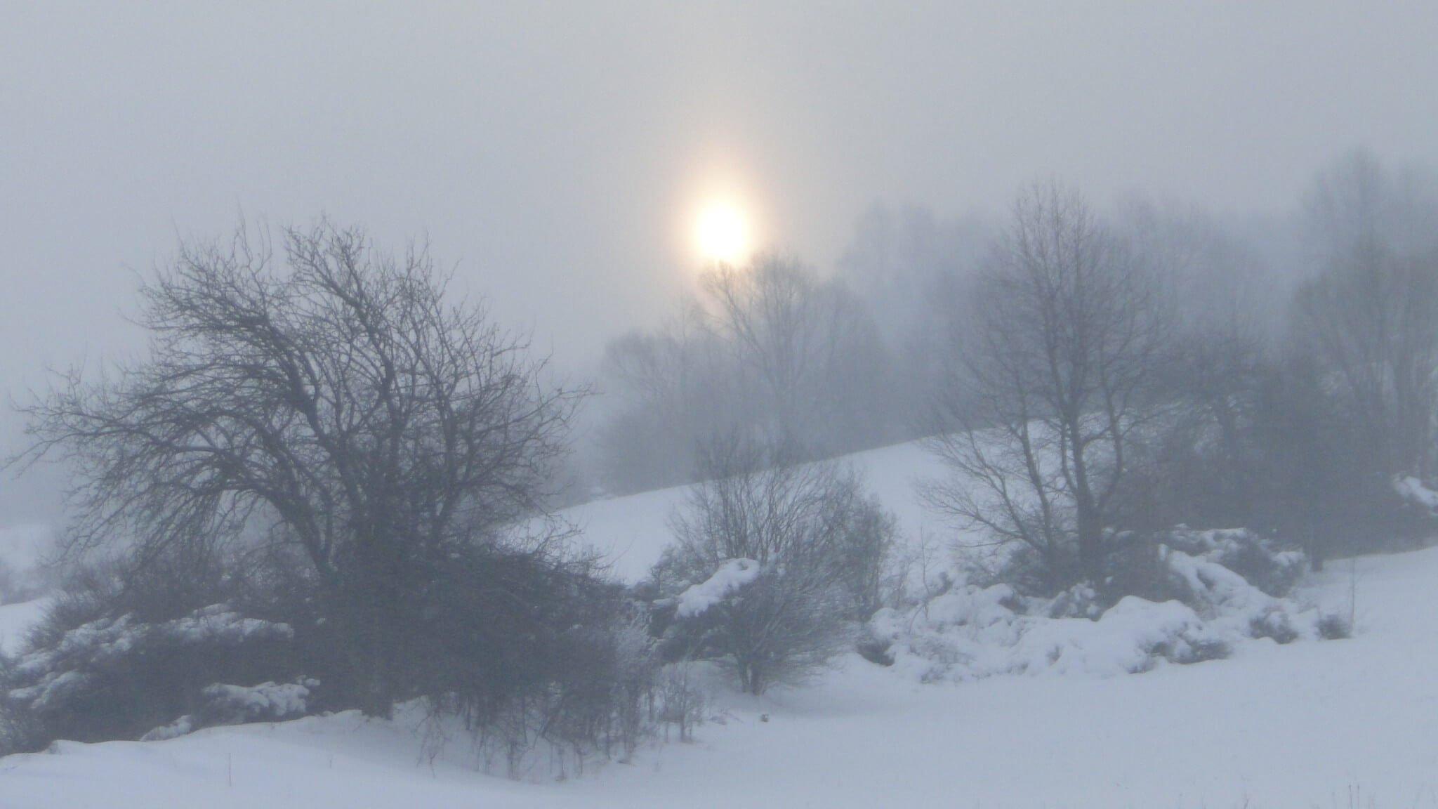 Lutowa zima - śnieżna imroźna 23