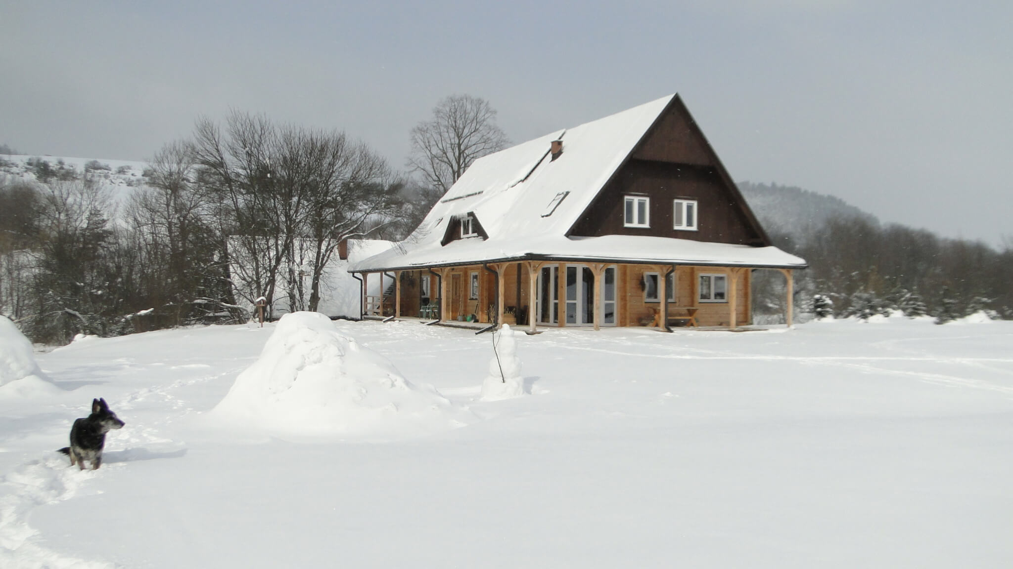 Lutowa zima - śnieżna imroźna 25