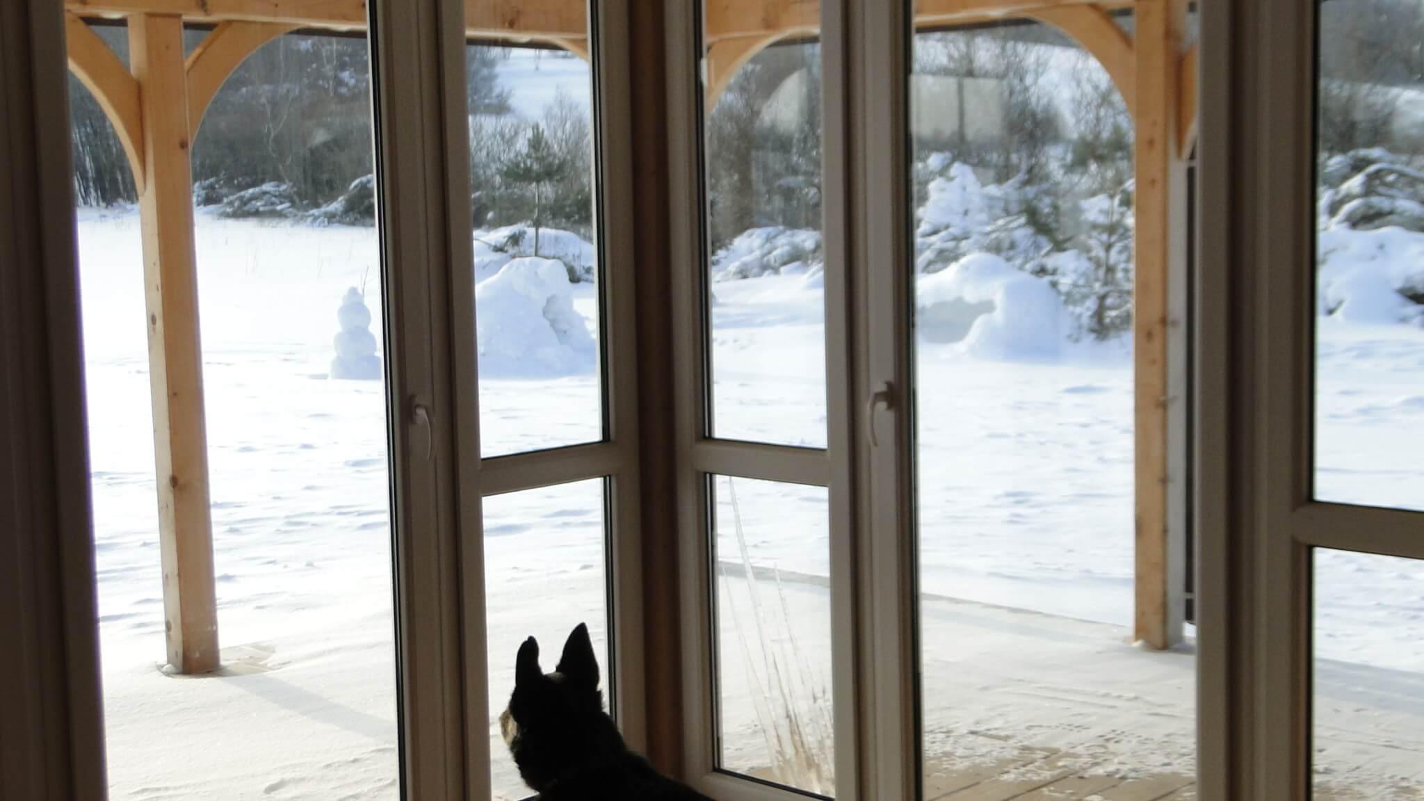 Lutowa zima - śnieżna i mroźna 26