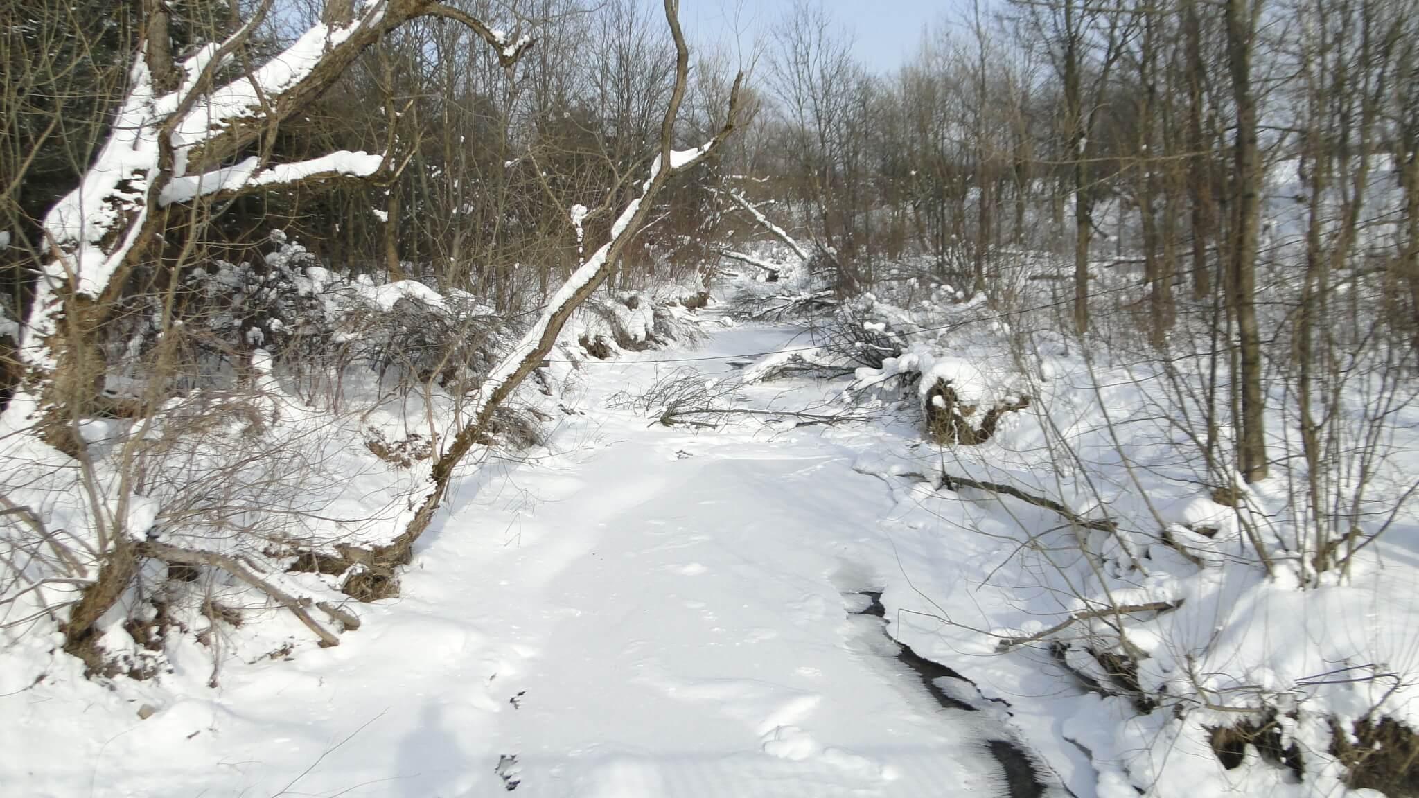 Lutowa zima - śnieżna imroźna 30