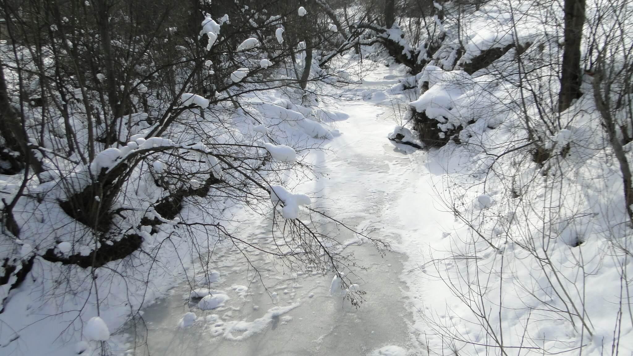 Lutowa zima - śnieżna i mroźna 31