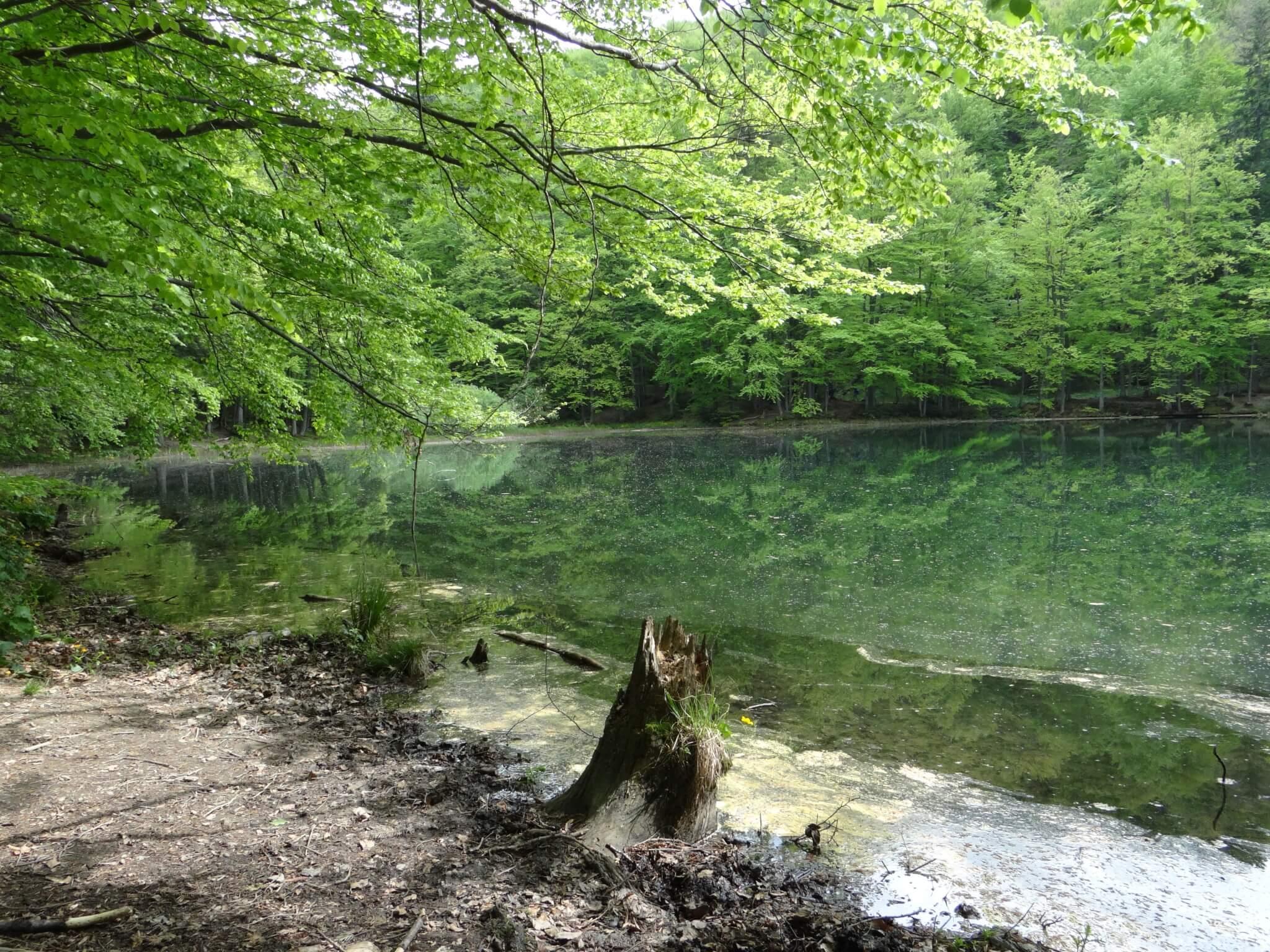 Jeziorka Duszatyńskie 1