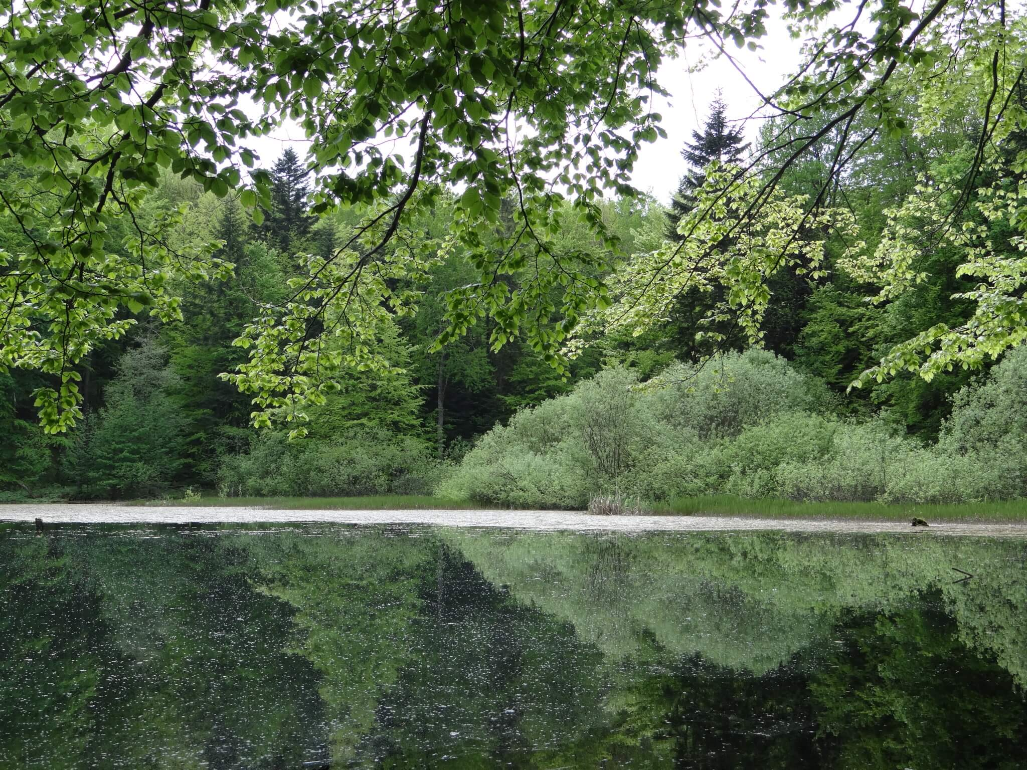 Jeziorka Duszatyńskie 3