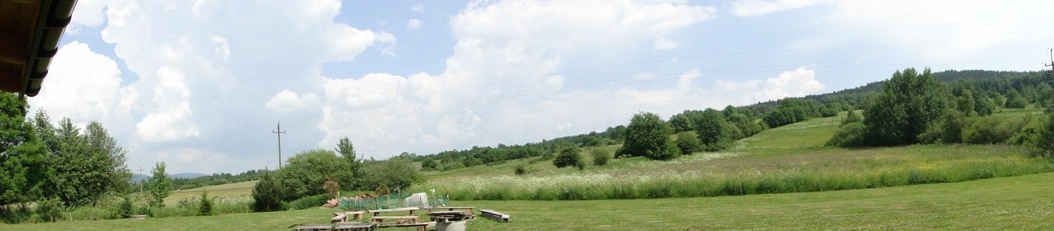 Czerwcowa łąka 4