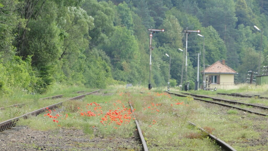 Pociągi POLREGIO wracają wBieszczady inaSłowację!