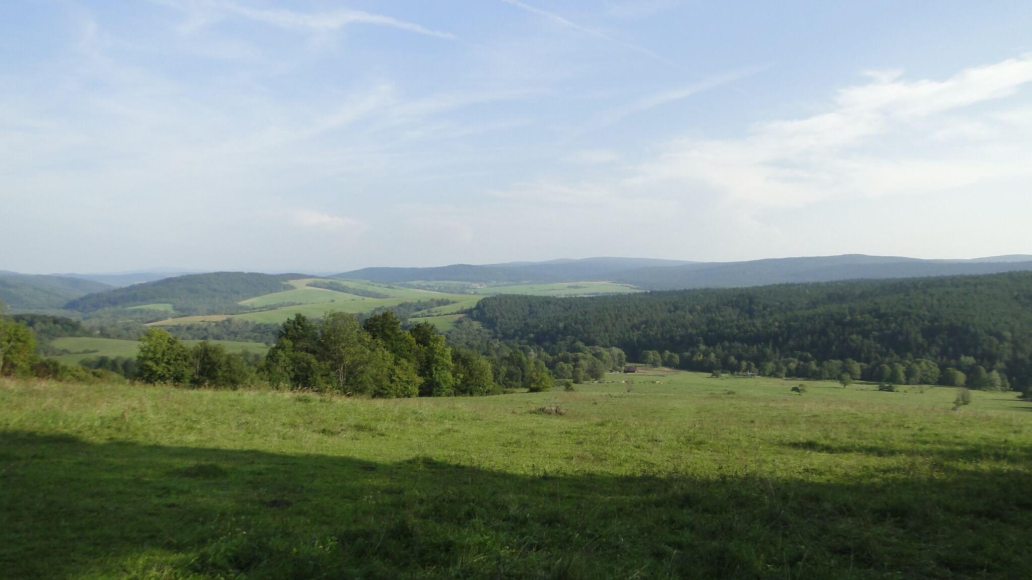 Nowy/stary krajobraz Polan Surowicznych 2