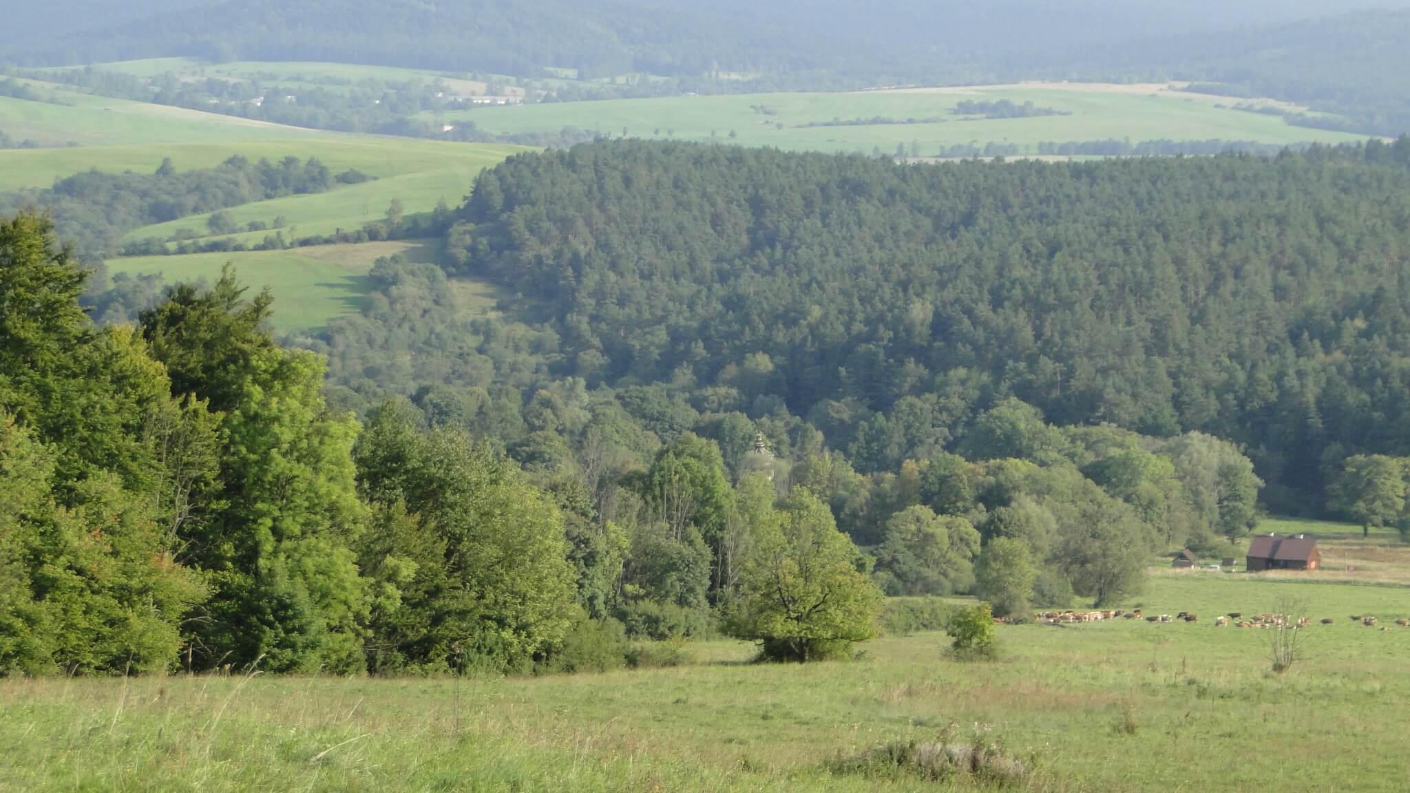 Nowy/stary krajobraz Polan Surowicznych 3