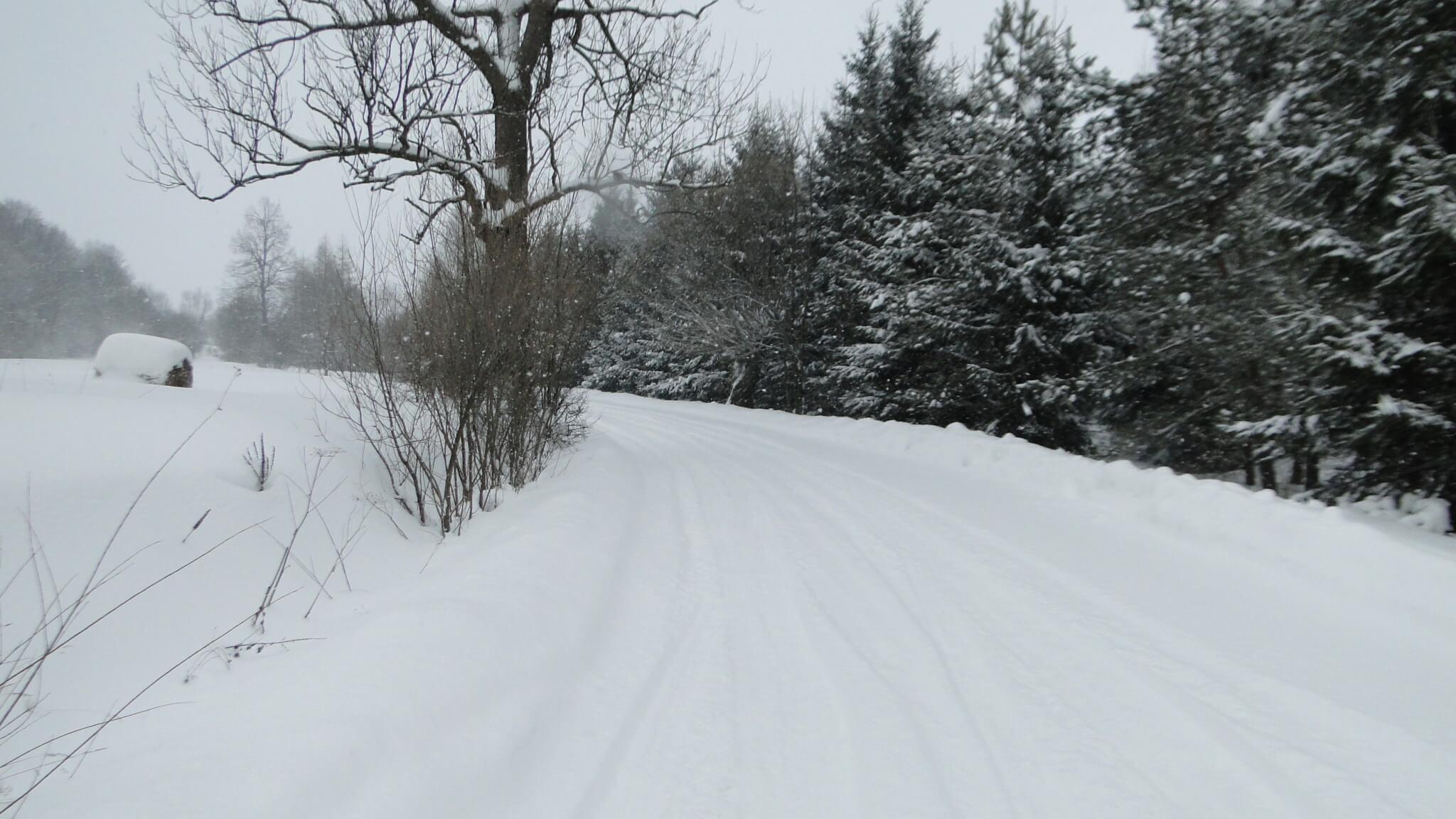 Śnieg,  śnieg, śnieg!... 1