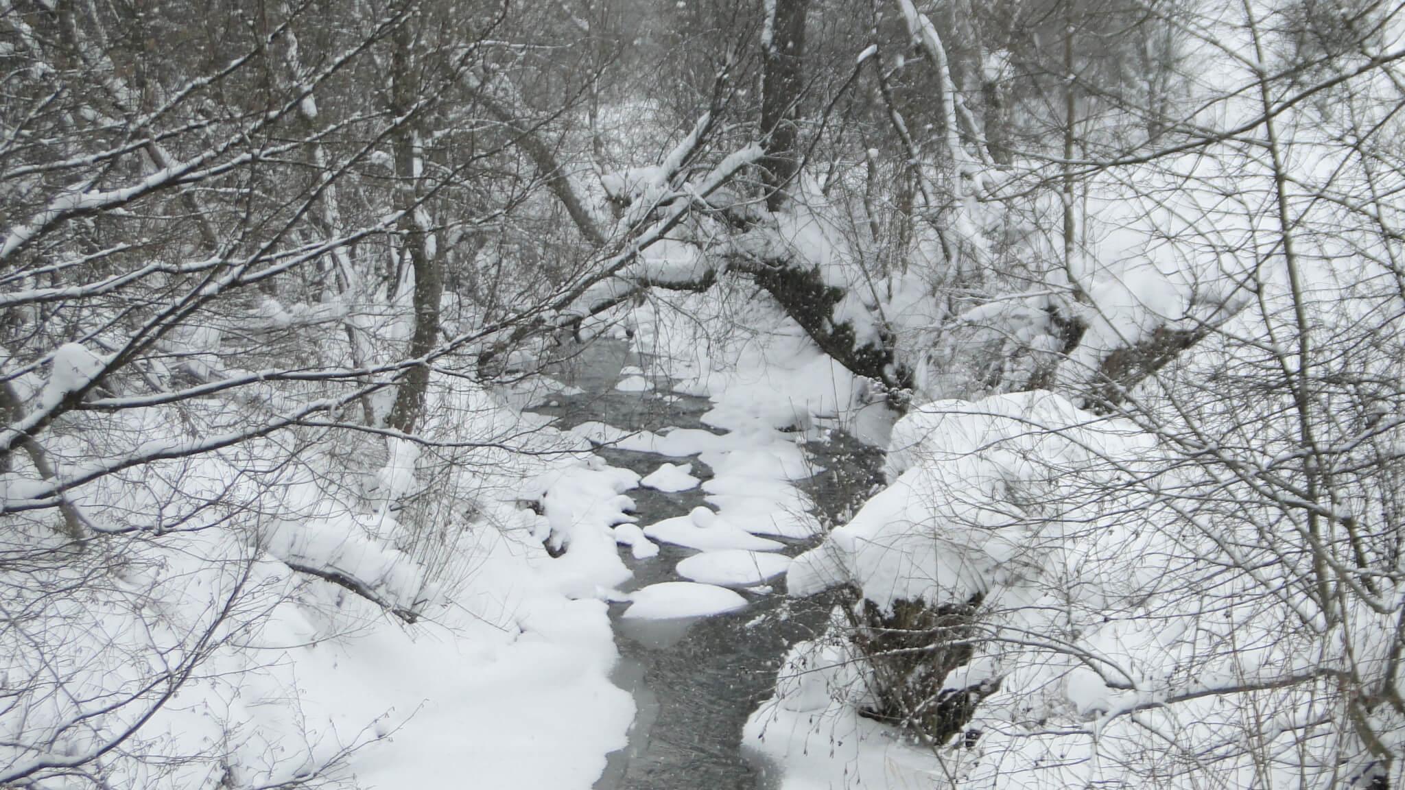 Śnieg,  śnieg, śnieg!... 4
