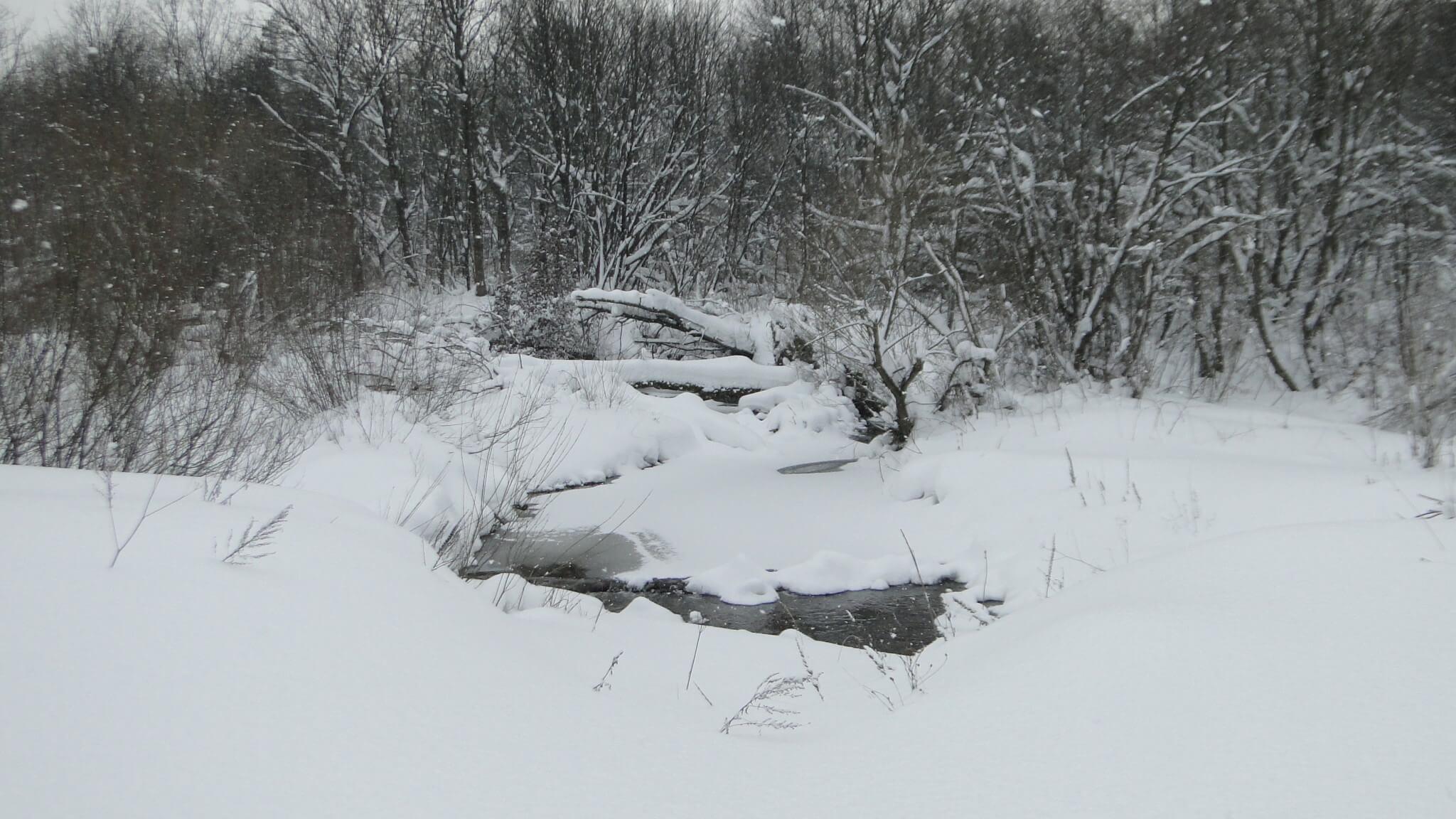 Śnieg,  śnieg, śnieg!... 9