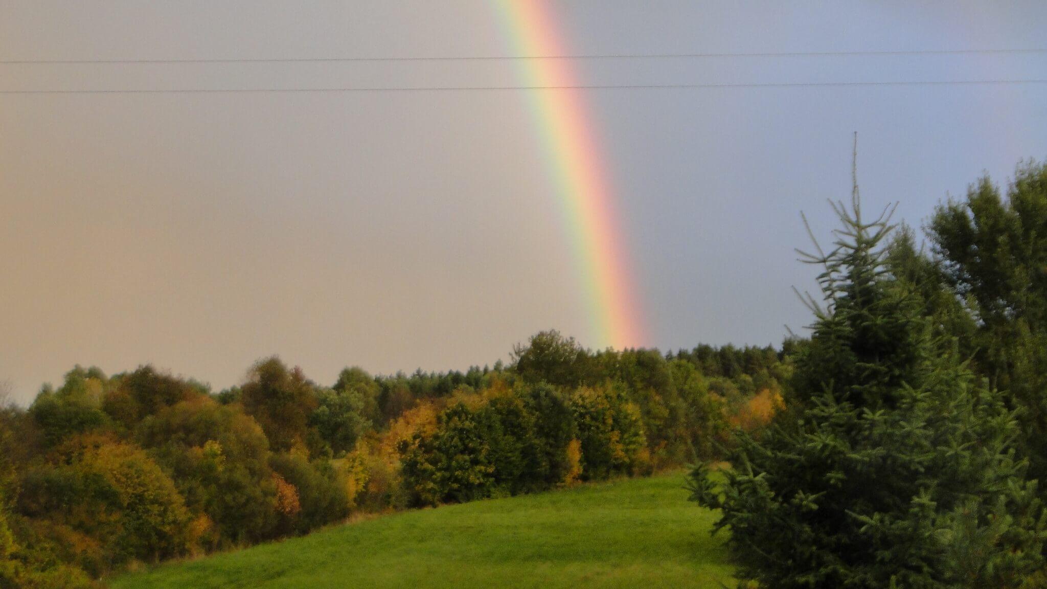 Jesienna tęcza 4