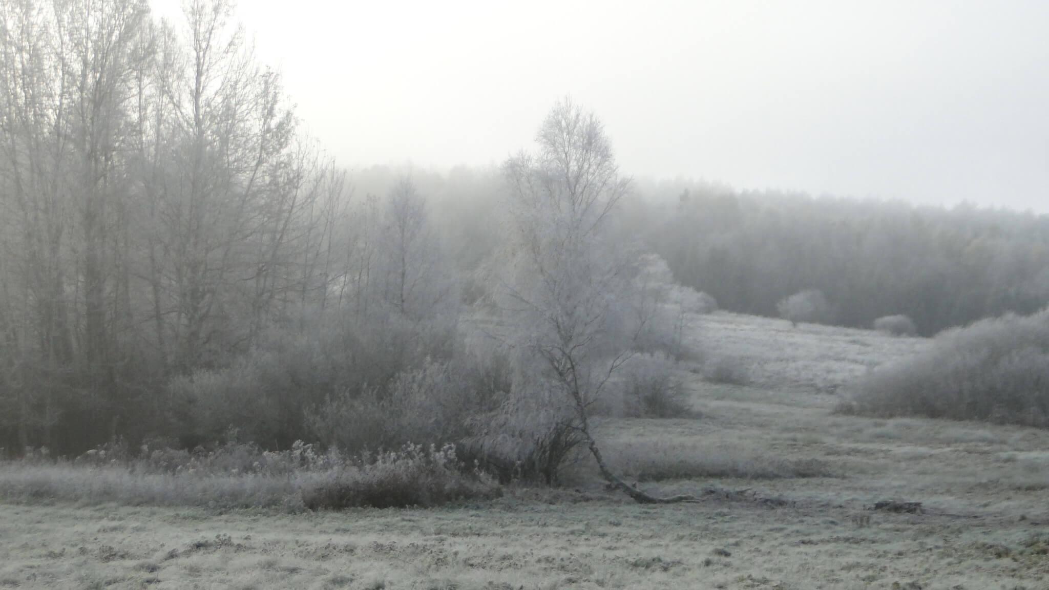 Idzie zima - niema natorady... 2