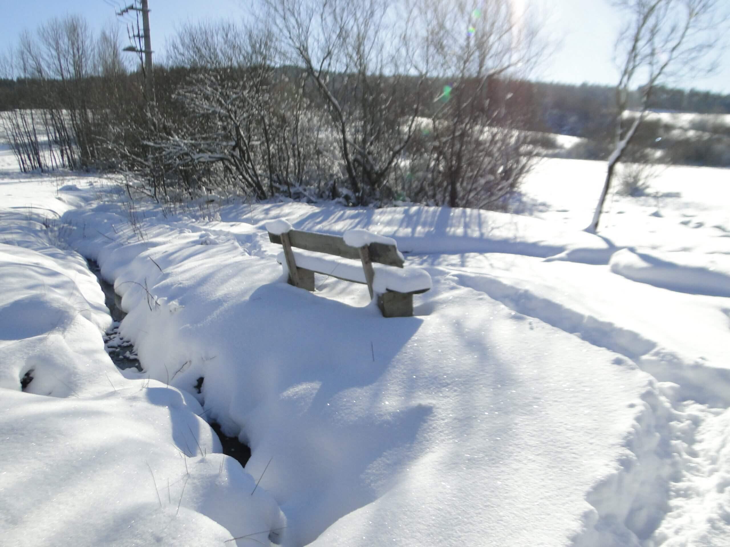 Dziwnej zimy ciąg dalszy 1
