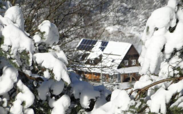 Dziwnej zimy ciąg dalszy 8