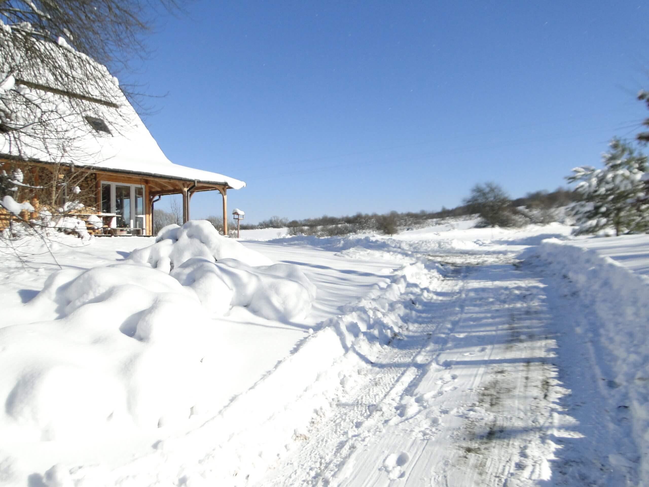 Dziwnej zimy ciąg dalszy 14